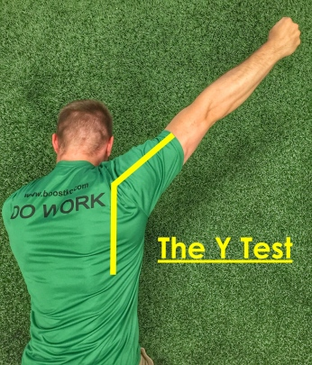 The Y Test