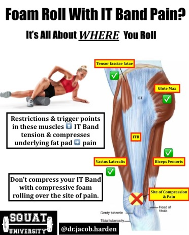 how to fix it band pain – squat university, Human Body