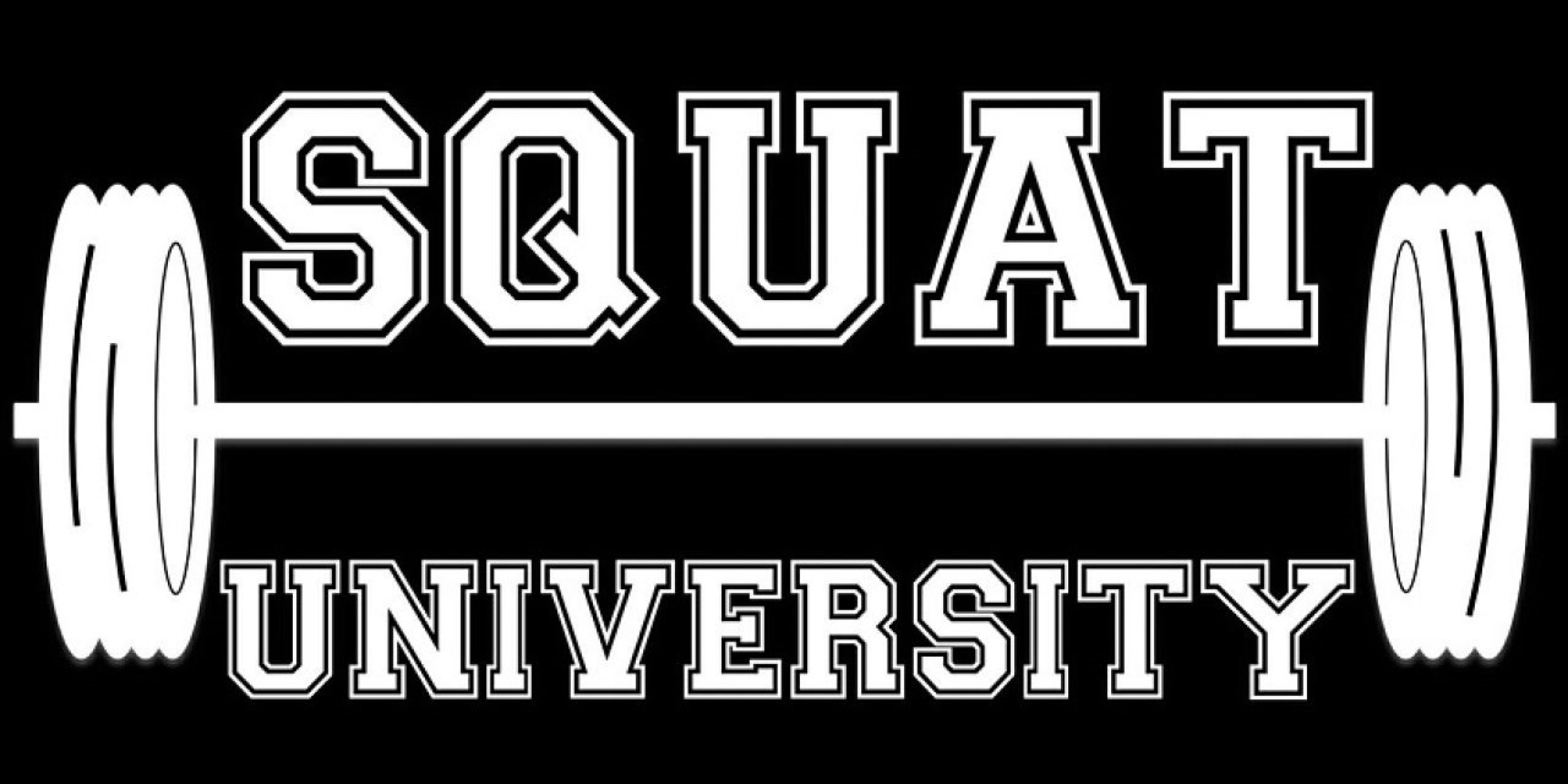 The Mcgill Big 3 For Core Stability Squat University Wiring Diagram