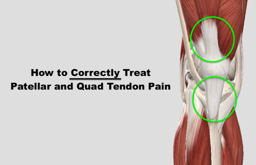 Fixing Patellar & Quad Tendon Pain – Squat University